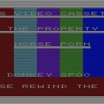 Video Security VIC-20 screenshot